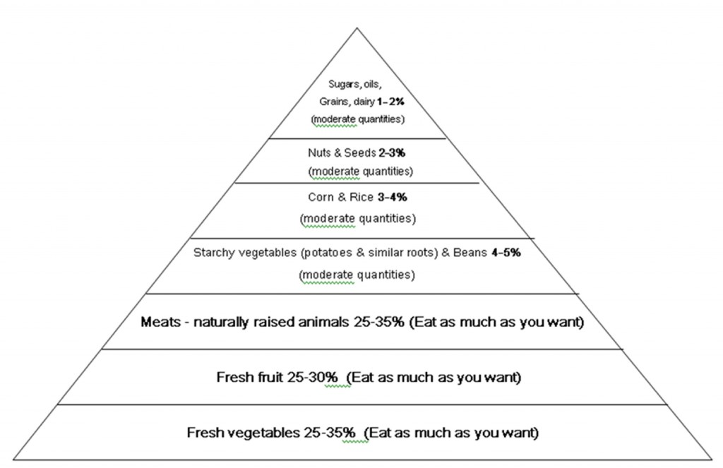 A-Food-Pyramid-Respecting-The-Natural-Human-Diet