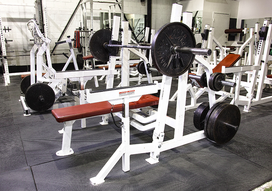 Fortis Bench Press
